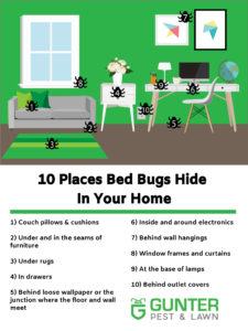10 places bed bugs hide in your home. Our bed bug exterminators know where to find them.
