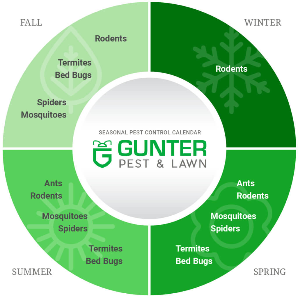 Gunter's Pest & Lawn calendar for seasonal pest control threats.