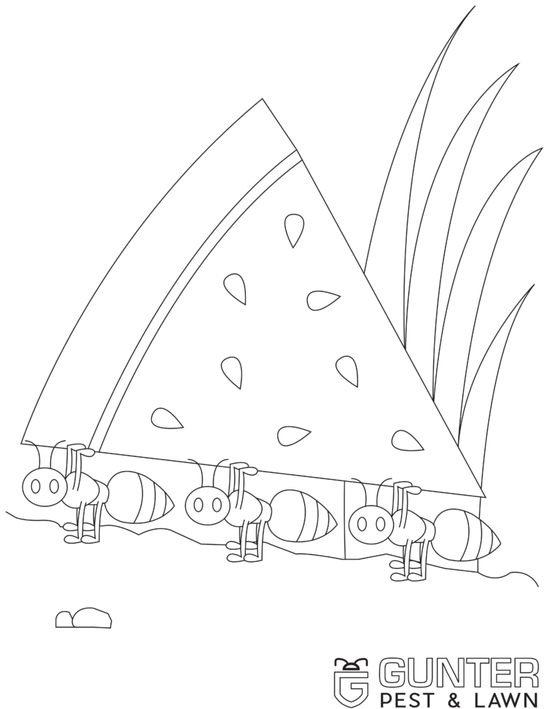 Take a look at one of these Printable Coloring Book Pages for Kids that Gunter Pest & Lawn has made