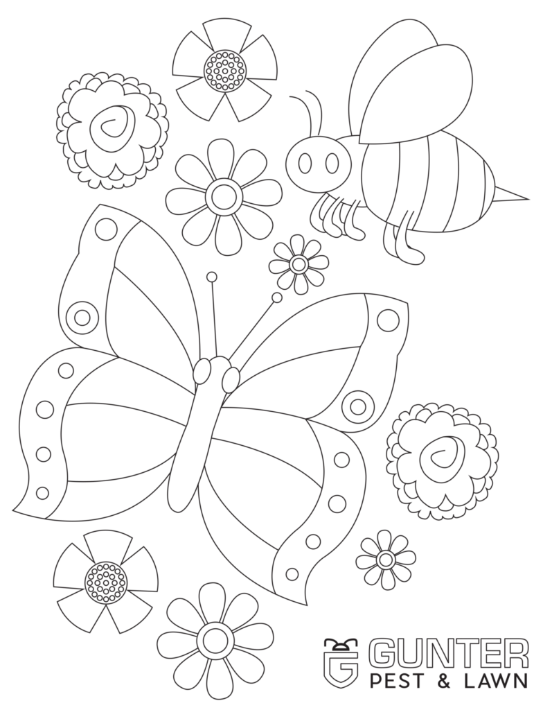 Bug Cutouts for your kids to print out and color from the Gunter Pest & Lawn Kids Corner.