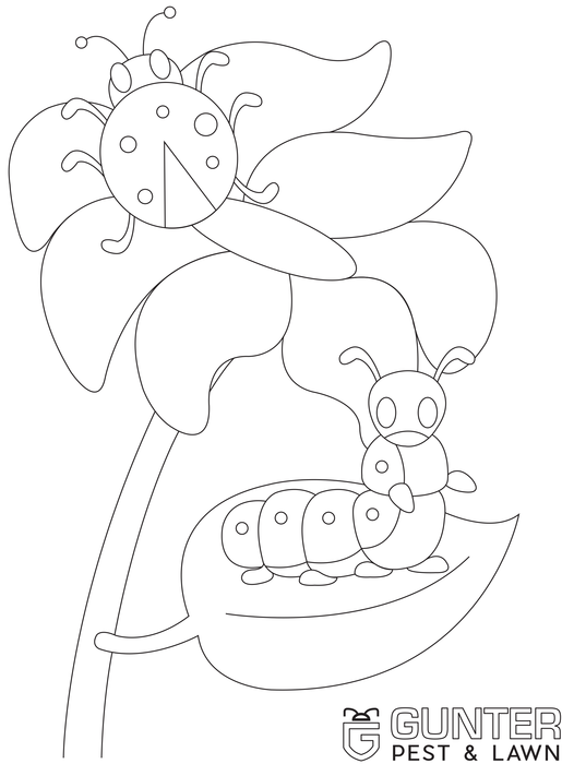 Ladybug and Caterpillar printable coloring page for kids.