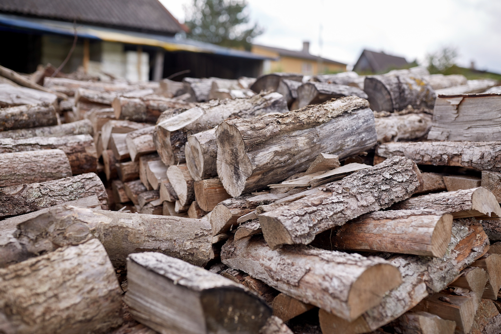 Cold Weather Pest Control will be easier if you keep your firewood away from your house to avoid pests