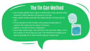 The tin can method to get a green lawn