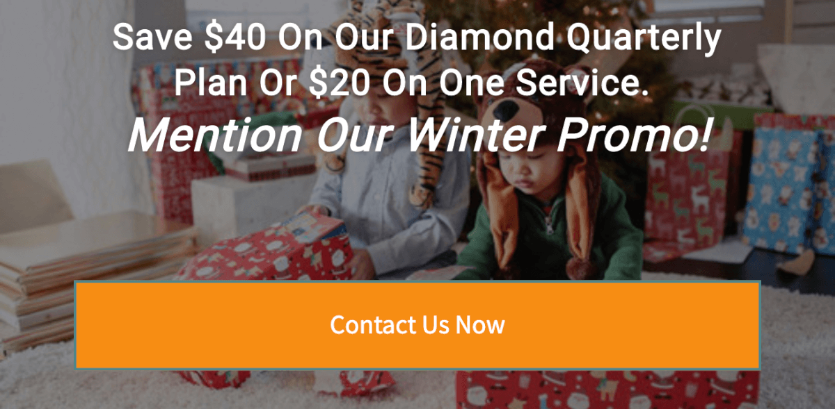 Winter promotion for pest control in Kansas City