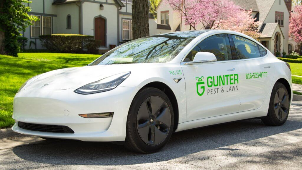 Electric Tesla Vehicle fleet powered by solar energy are helping Gunter with going green.