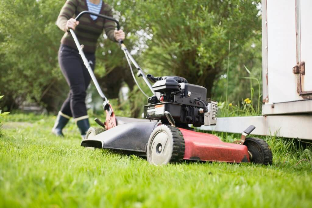 Keep mowing regularly. Mowing a lawn in Kansas City.