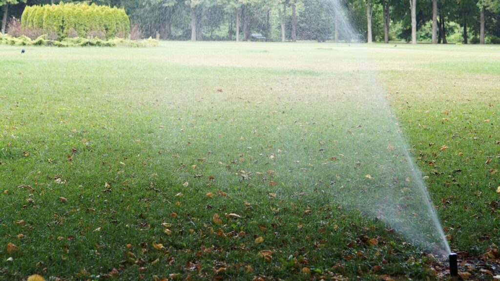 Watering the lawn in Kansas City, MO.